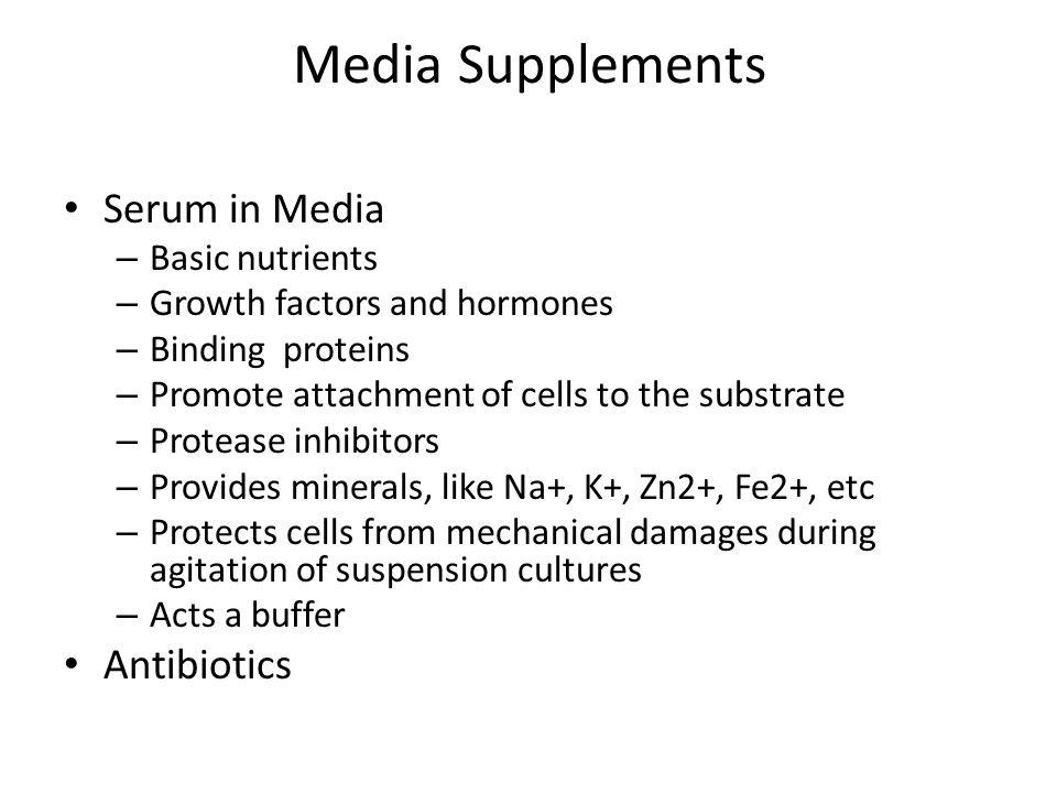 Media Supplements Serum in Media Antibiotics Basic nutrients
