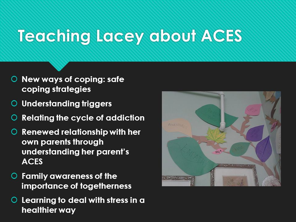 Teaching Lacey about ACES