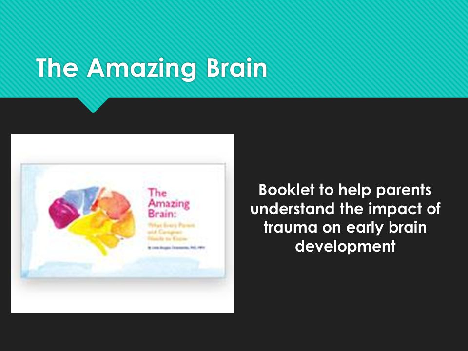 The Amazing Brain Booklet to help parents understand the impact of trauma on early brain development.