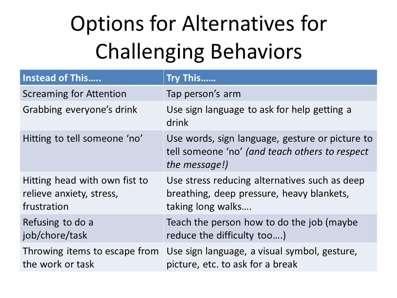 Options for Alternatives for Challenging Behaviors