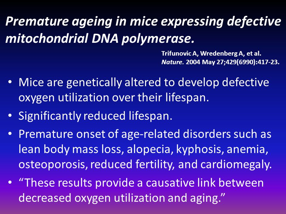 Premature ageing in mice expressing defective mitochondrial DNA polymerase.