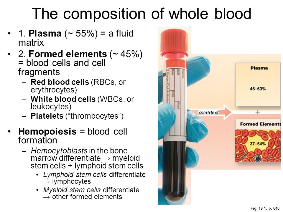 The composition of whole blood