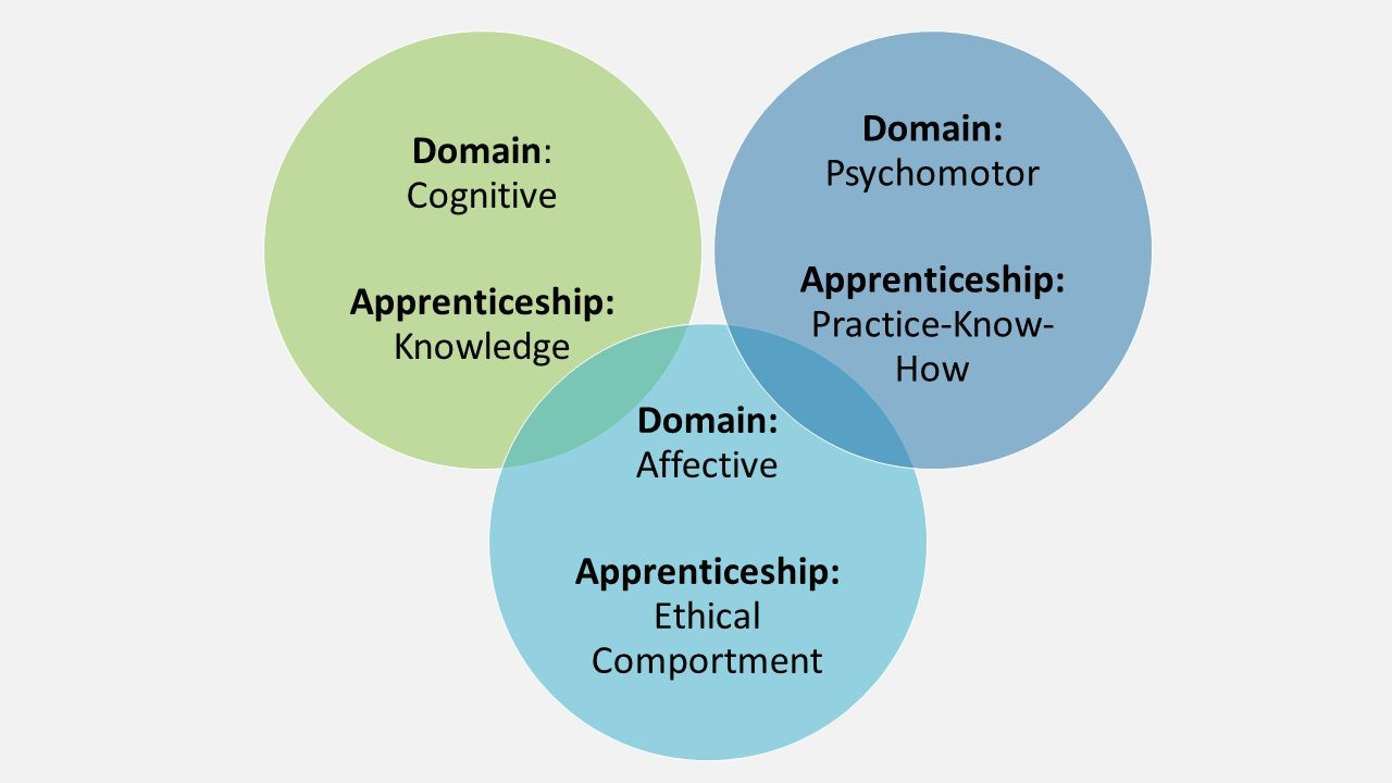 Apprenticeship: Knowledge Domain: Cognitive