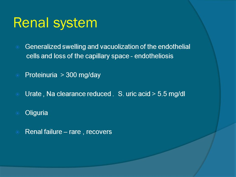 Renal system Generalized swelling and vacuolization of the endothelial