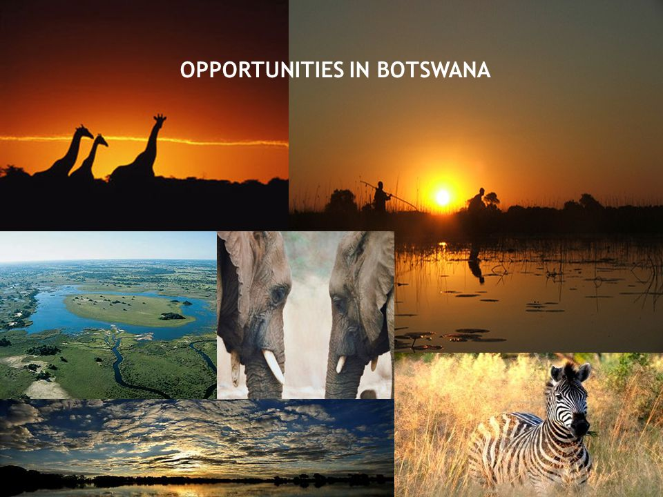 OPPORTUNITIES IN BOTSWANA