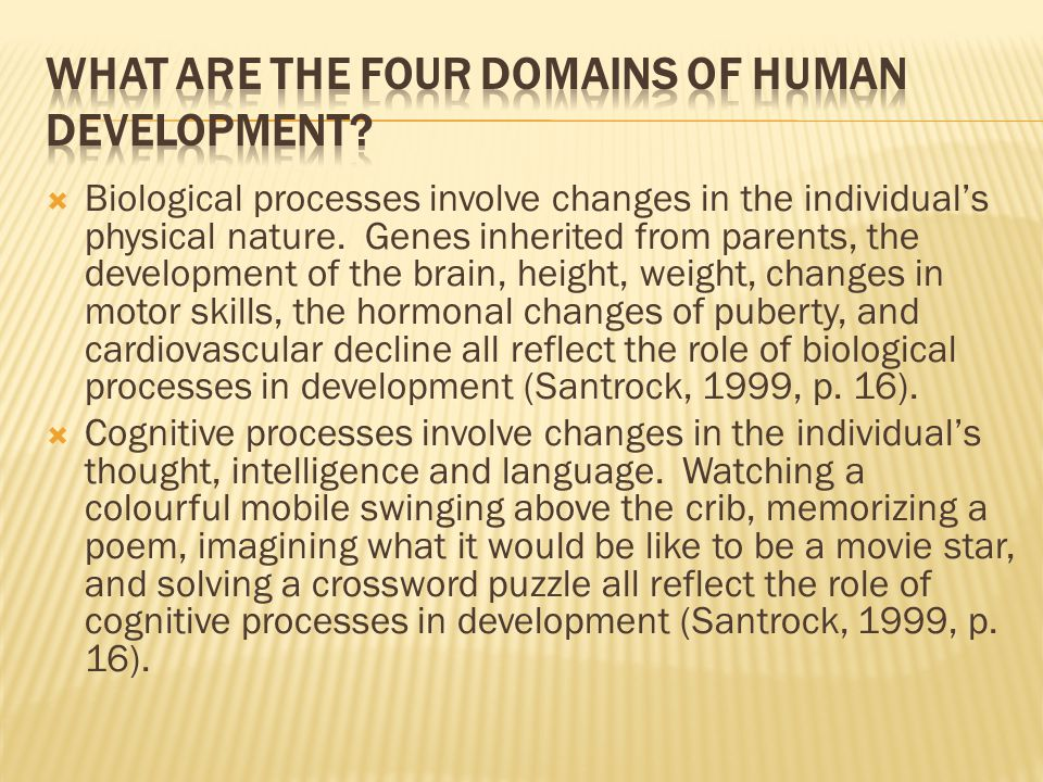 What are the four domains of human development