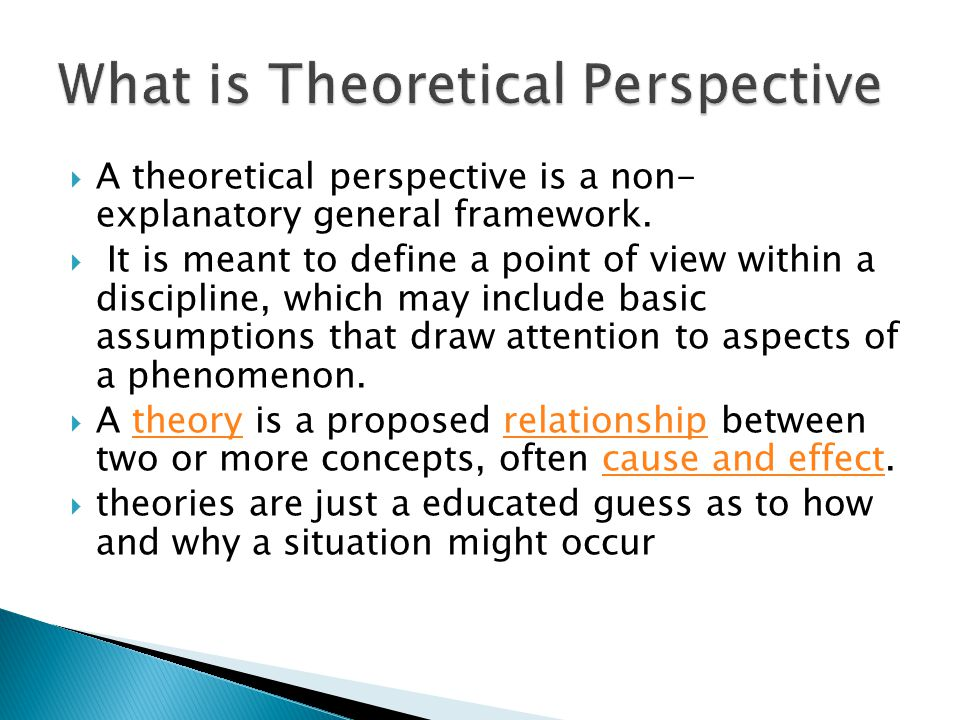 What is Theoretical Perspective