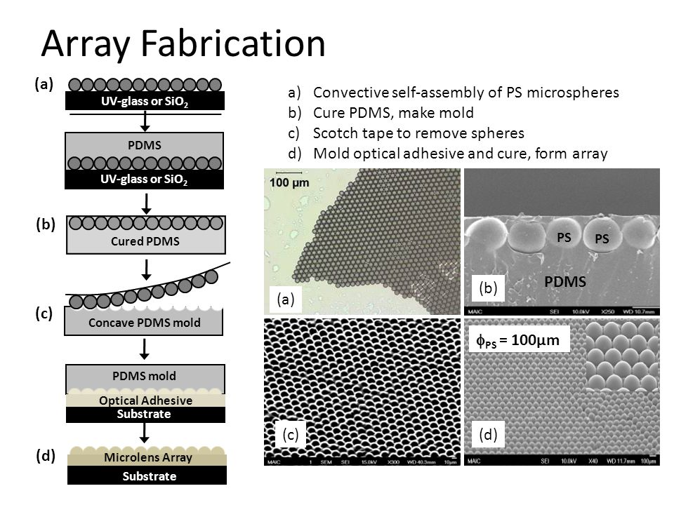 Array Fabrication (a) Convective self-assembly of PS microspheres