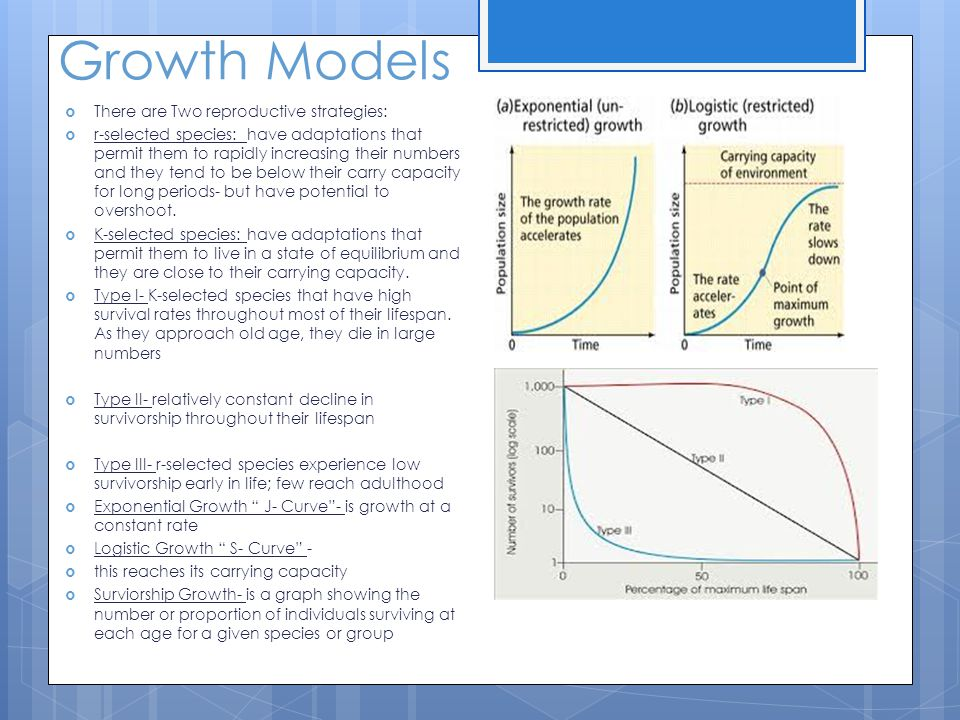 Growth Models Exponential, Logistic, and Survivorship Models