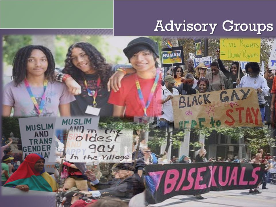 Advisory Groups Explain Ags About 100 members