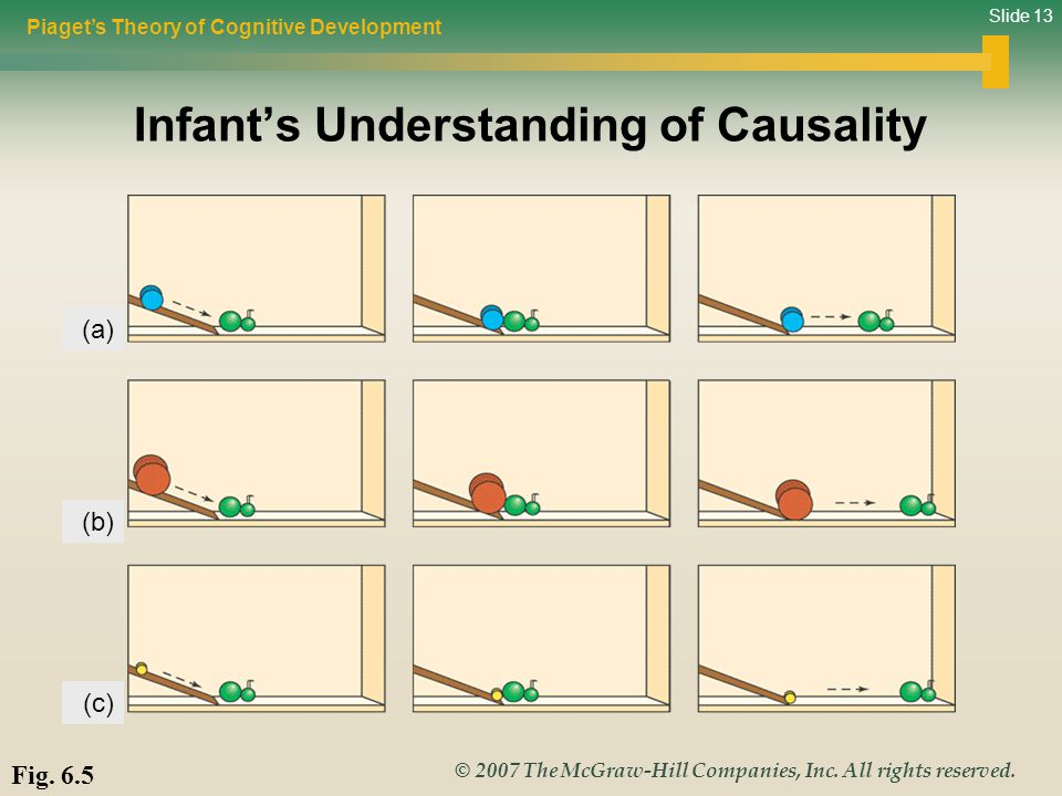 Infant's Understanding of Causality