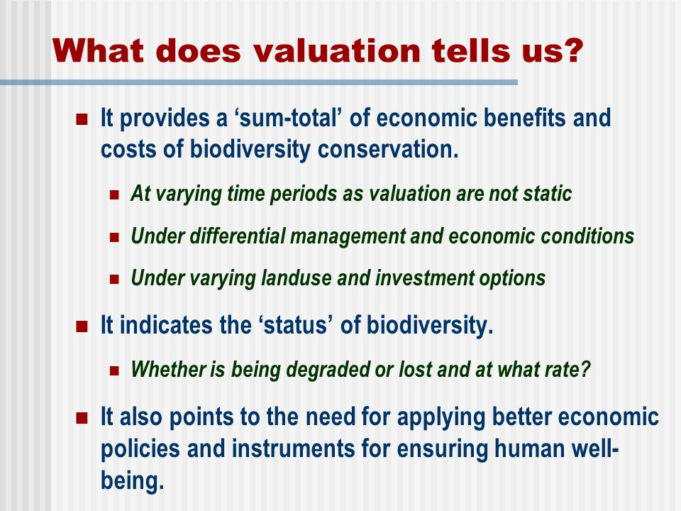 What does valuation tells us