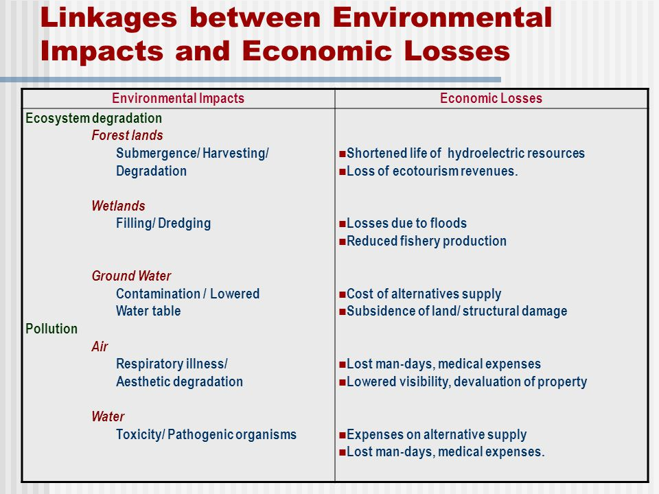 Linkages between Environmental Impacts and Economic Losses
