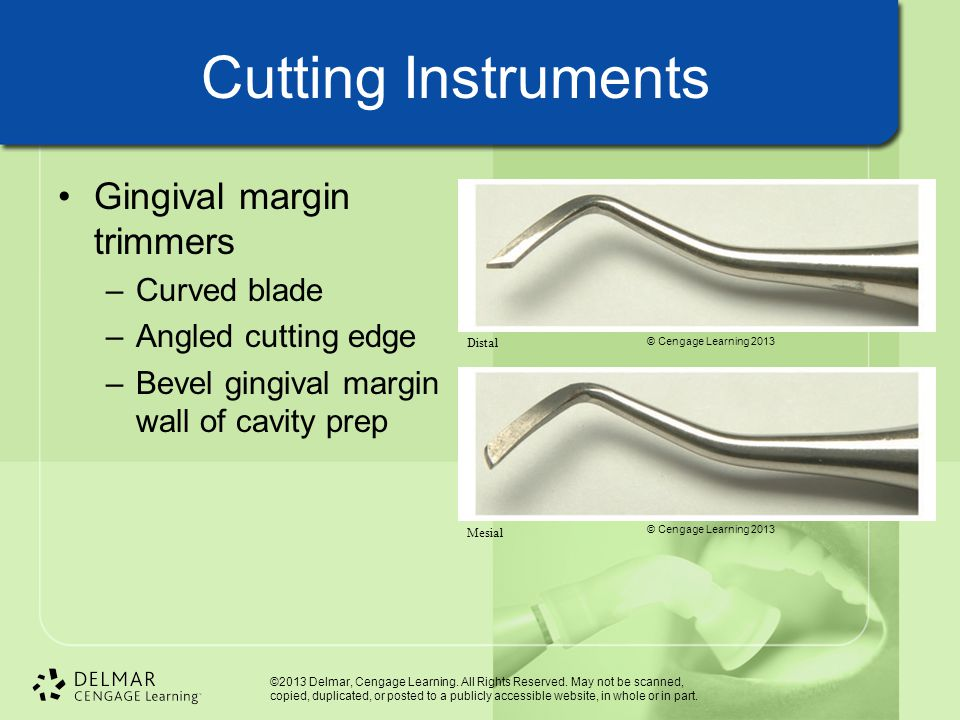 Cutting Instruments Gingival margin trimmers Curved blade