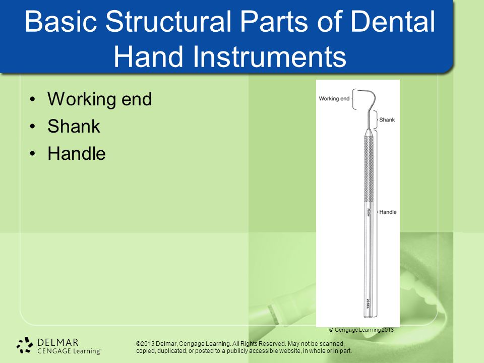 Basic Structural Parts of Dental Hand Instruments