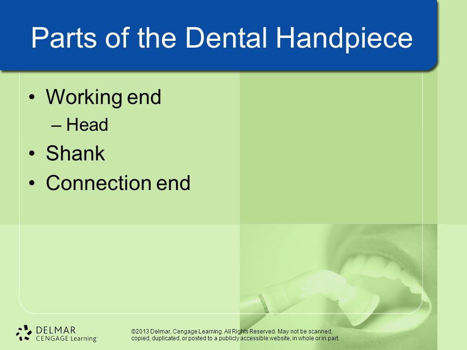 Parts of the Dental Handpiece