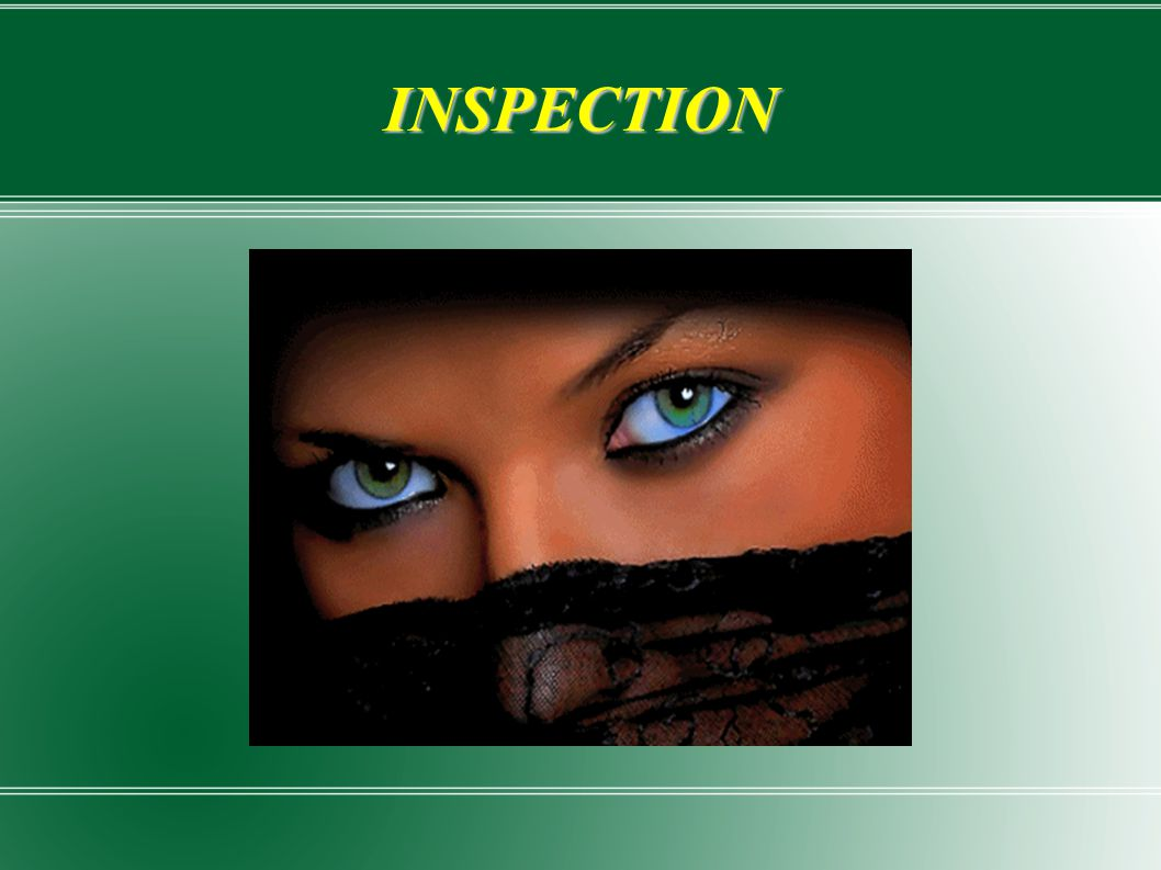 INSPECTION 4