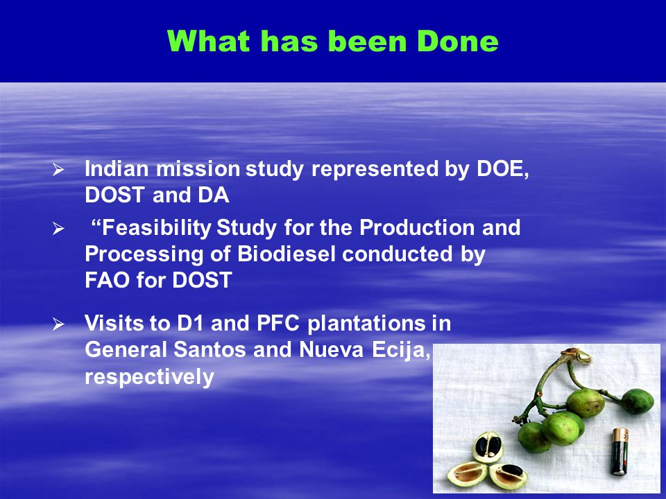 What has been Done Indian mission study represented by DOE, DOST and DA.