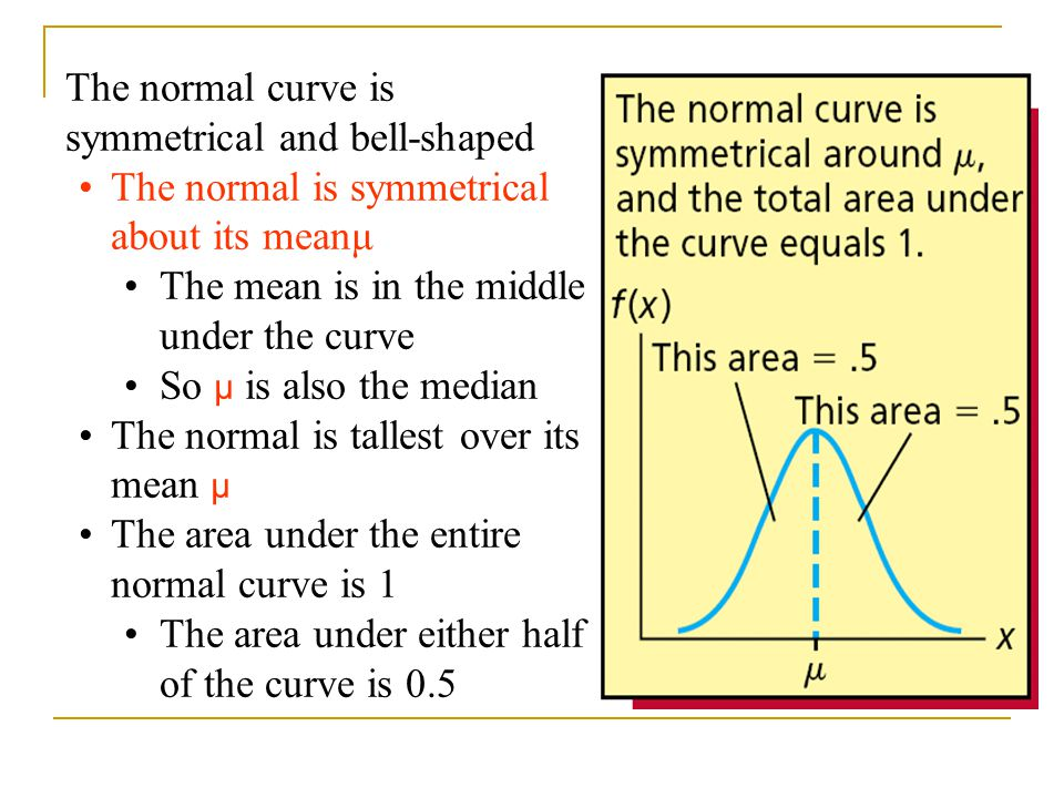 The normal curve is symmetrical and bell-shaped