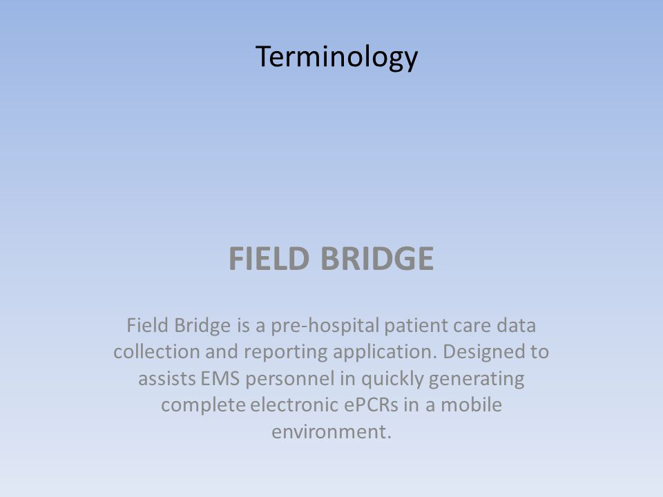 FIELD BRIDGE Terminology