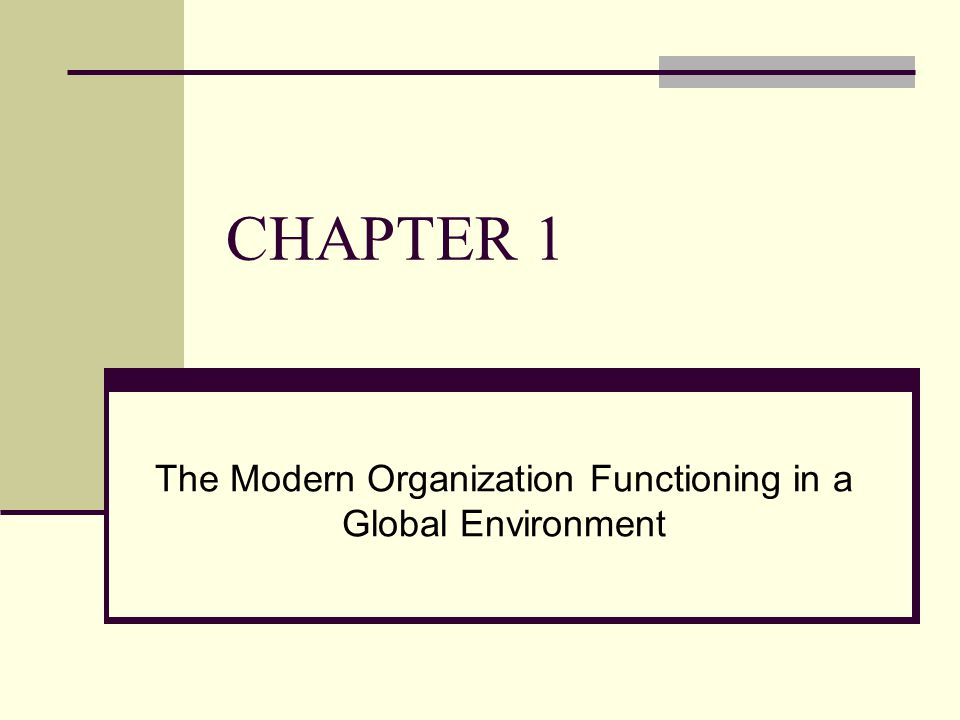 The Modern Organization Functioning in a Global Environment