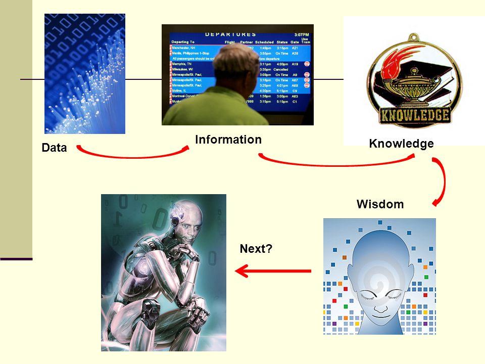 Information Knowledge Data Wisdom Next