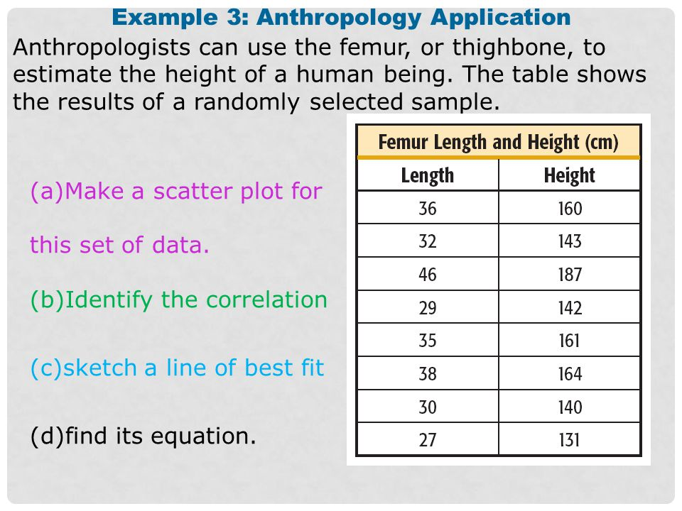 Example 3: Anthropology Application