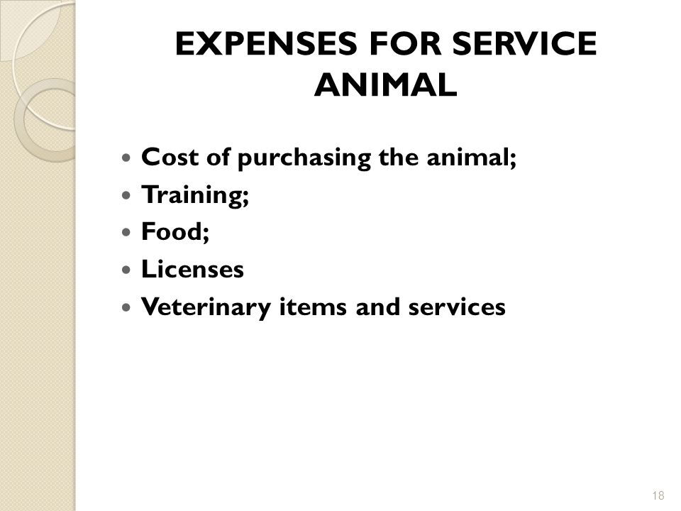 EXPENSES FOR SERVICE ANIMAL