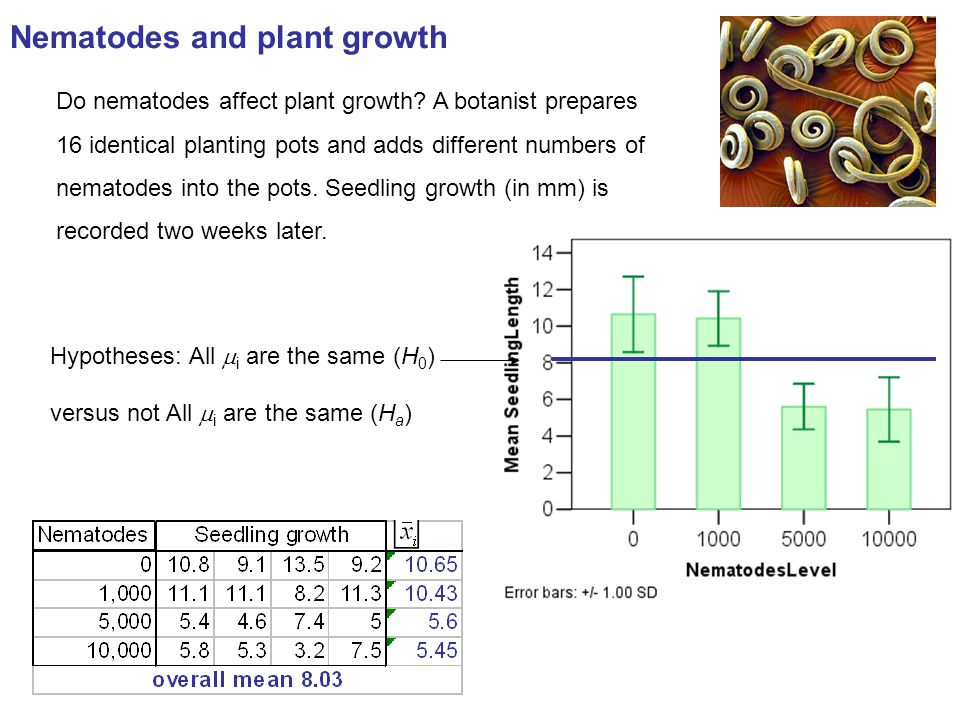 Nematodes and plant growth