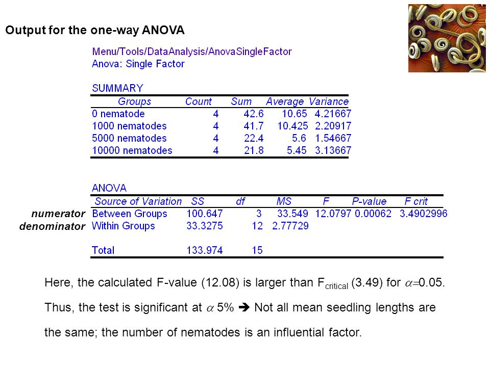 Output for the one-way ANOVA
