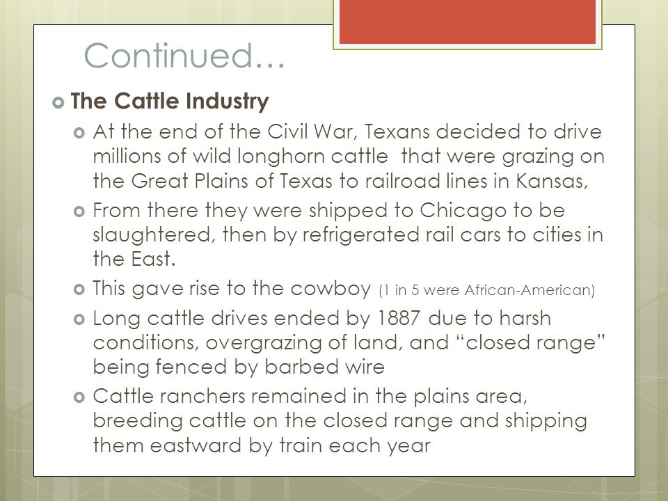 Continued… The Cattle Industry