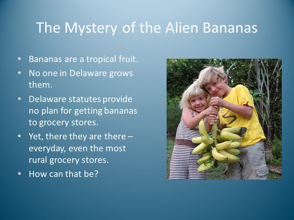 The Mystery of the Alien Bananas