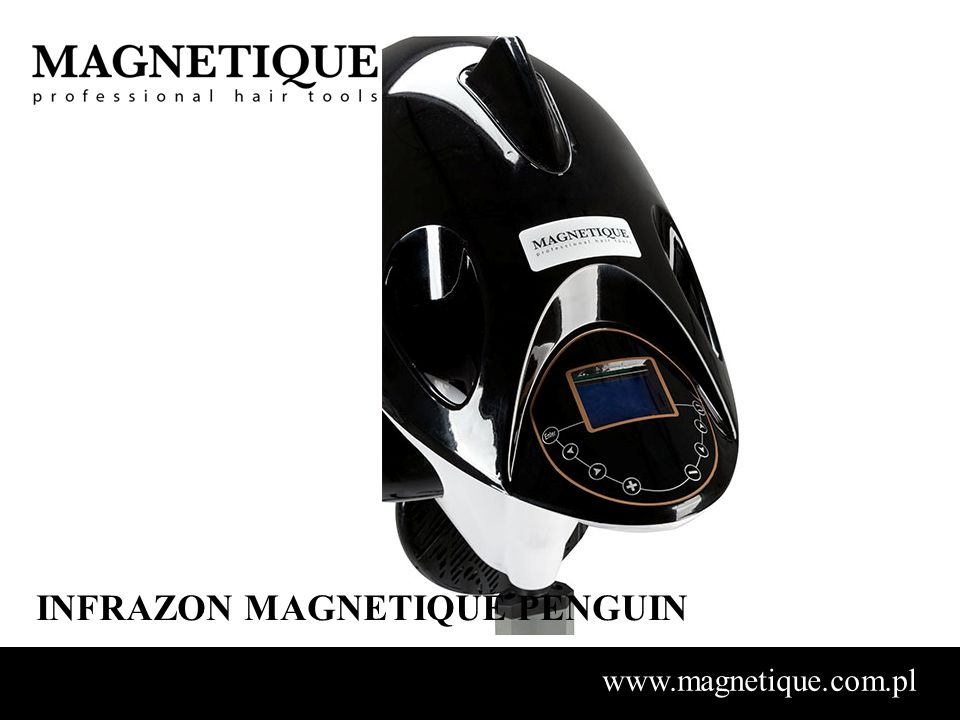 INFRAZON MAGNETIQUE PENGUIN