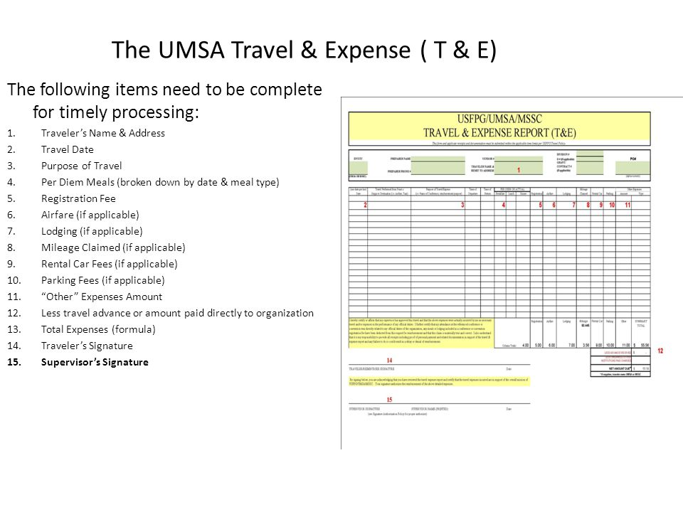 The UMSA Travel & Expense ( T & E)