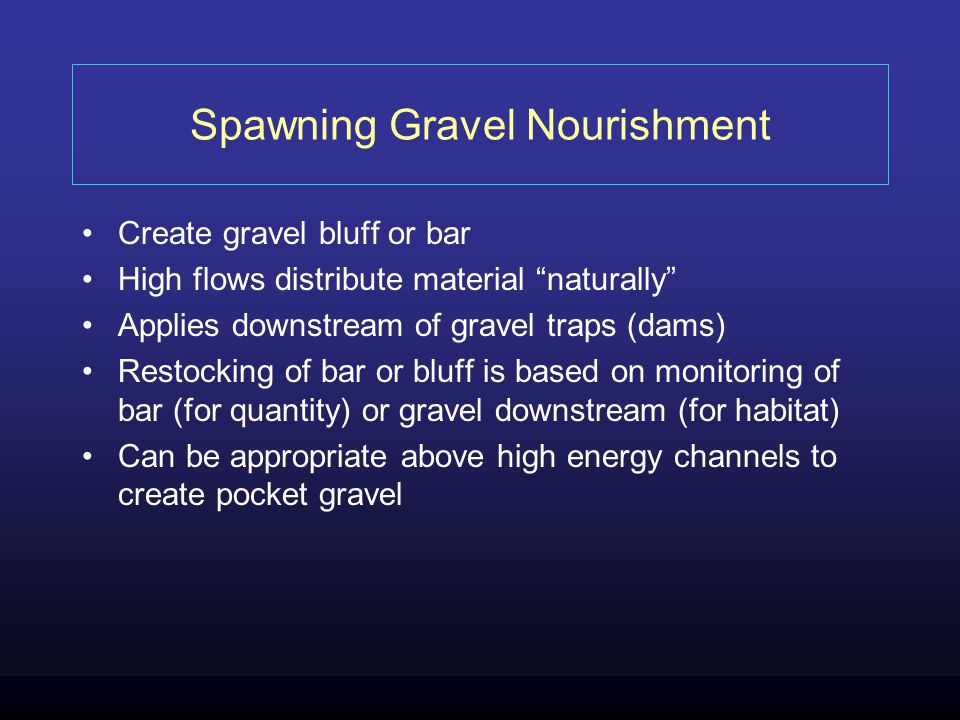 Spawning Gravel Nourishment