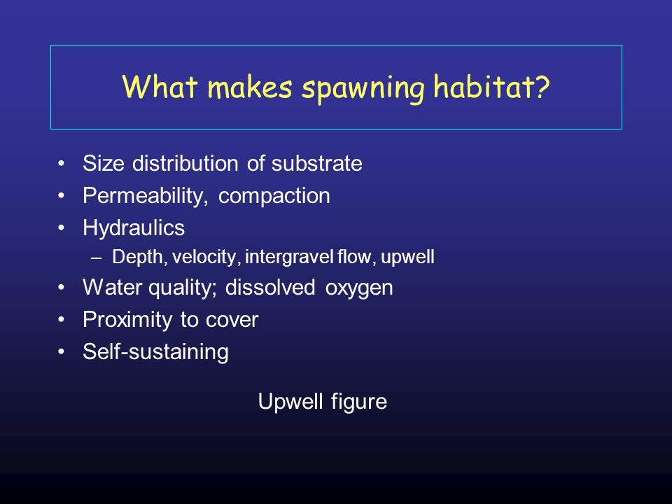 What makes spawning habitat