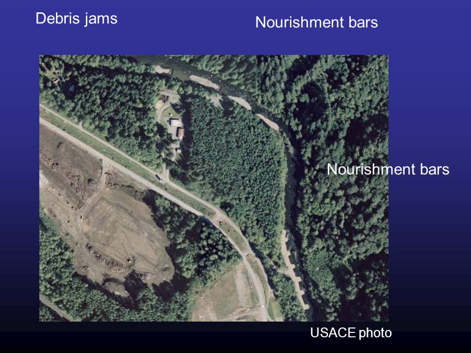 Debris jams Nourishment bars Nourishment bars USACE photo