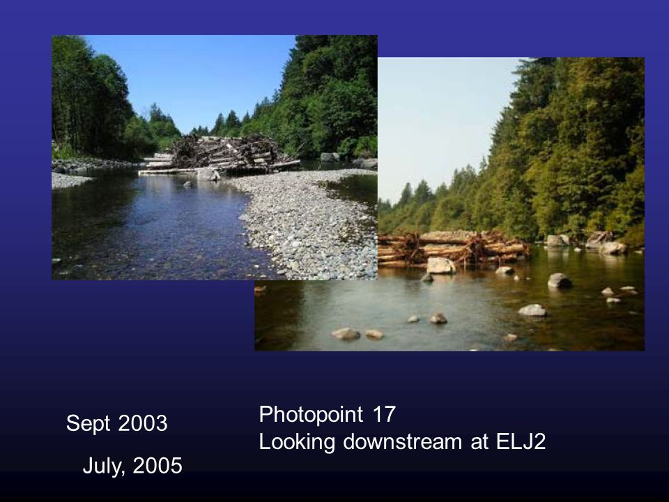 Photopoint 17 Looking downstream at ELJ2 Sept 2003 July, 2005