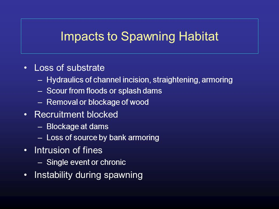 Impacts to Spawning Habitat