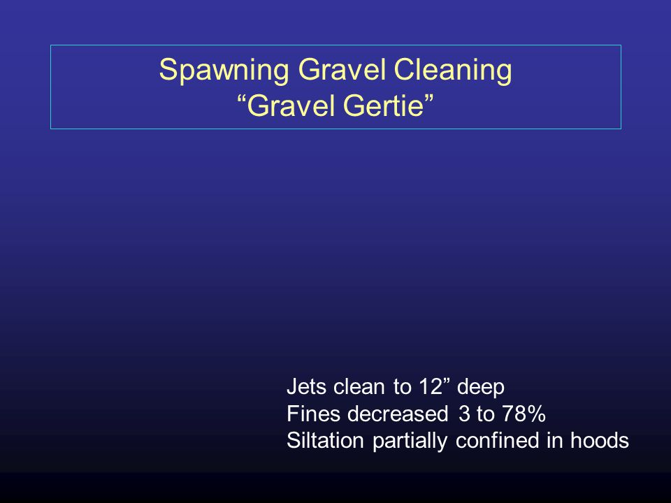 Spawning Gravel Cleaning Gravel Gertie