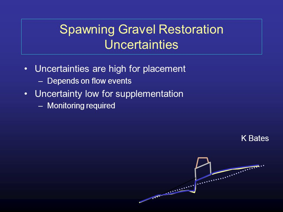 Spawning Gravel Restoration Uncertainties