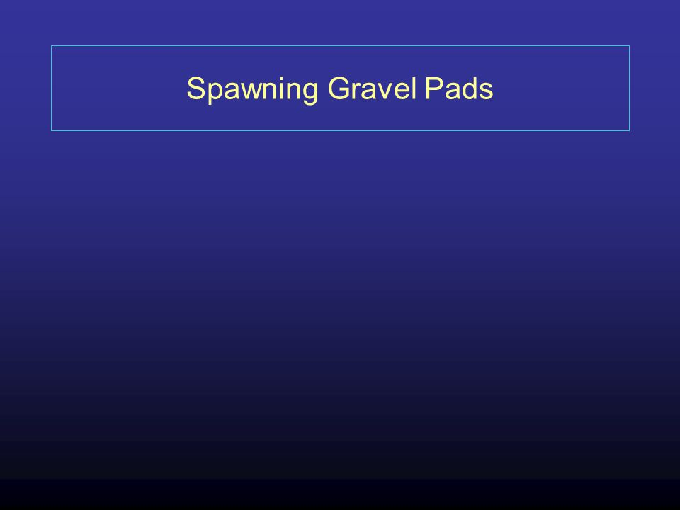 Spawning Gravel Pads