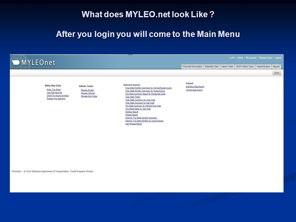 What does MYLEO. net look Like