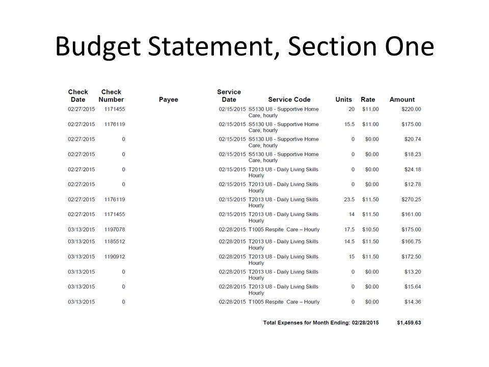 Budget Statement, Section One