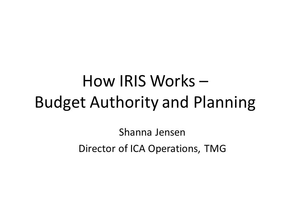 How IRIS Works – Budget Authority and Planning
