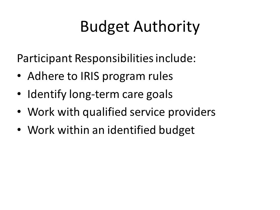 Budget Authority Participant Responsibilities include: