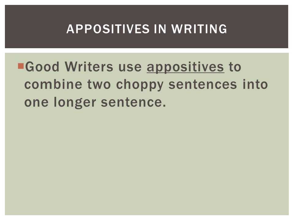 Appositives in writing