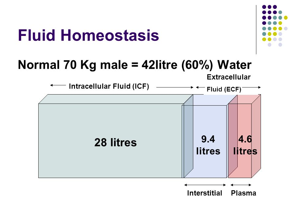 Fluid Homeostasis Normal 70 Kg male = 42litre (60%) Water 28 litres