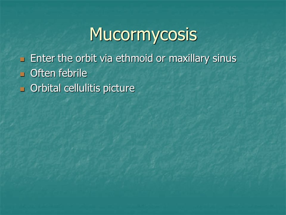 Mucormycosis Enter the orbit via ethmoid or maxillary sinus