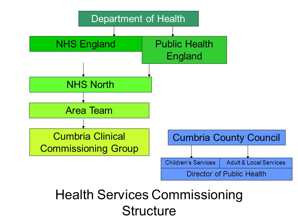 Health Services Commissioning Structure